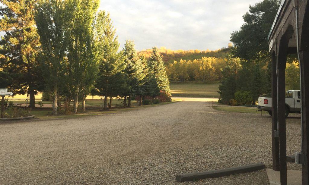 Fall view down entry lane